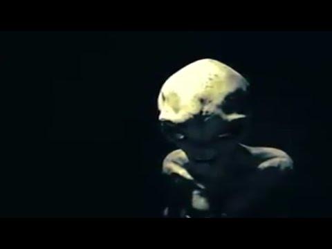 Alien asegura ser humano del futuro – Entrevista filtrada Area 51