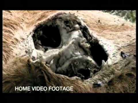 AREA 51-Tajna vrijedna milijardu dolara