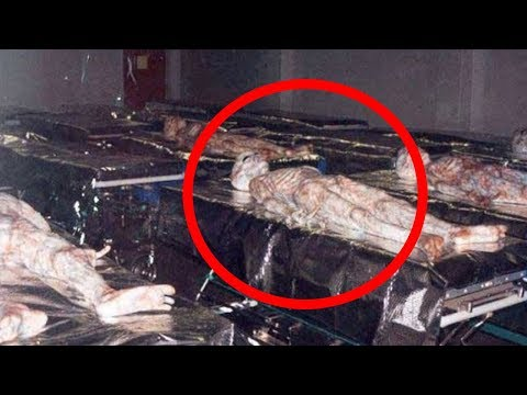 5 Things Area 51 Doesn't Want You To Know!