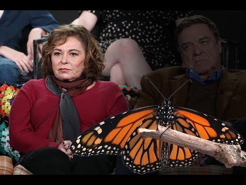 Is Roseanne Barr back under MK Ultra Mind Control?