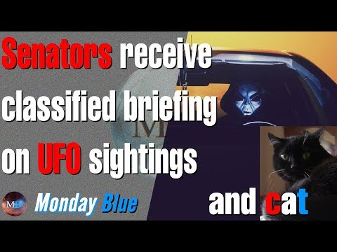 Senators and cat receive classified briefing on UFO sightings