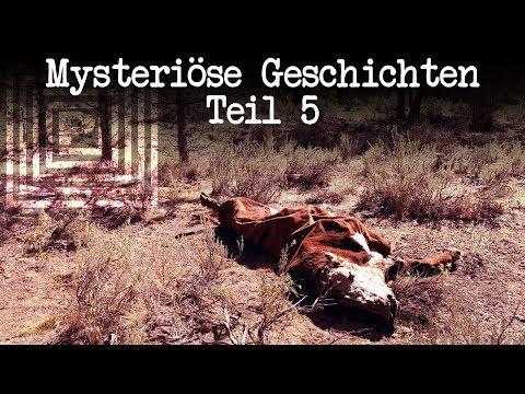 Mysteriöse Geschichten – Teil 5 | Dulce Base