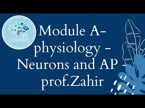 W1 – Physiology – (L1) Neurons and Their Action Potential – Prof.Zahir